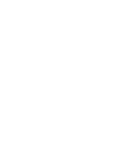 tree-with-roots-icon-white